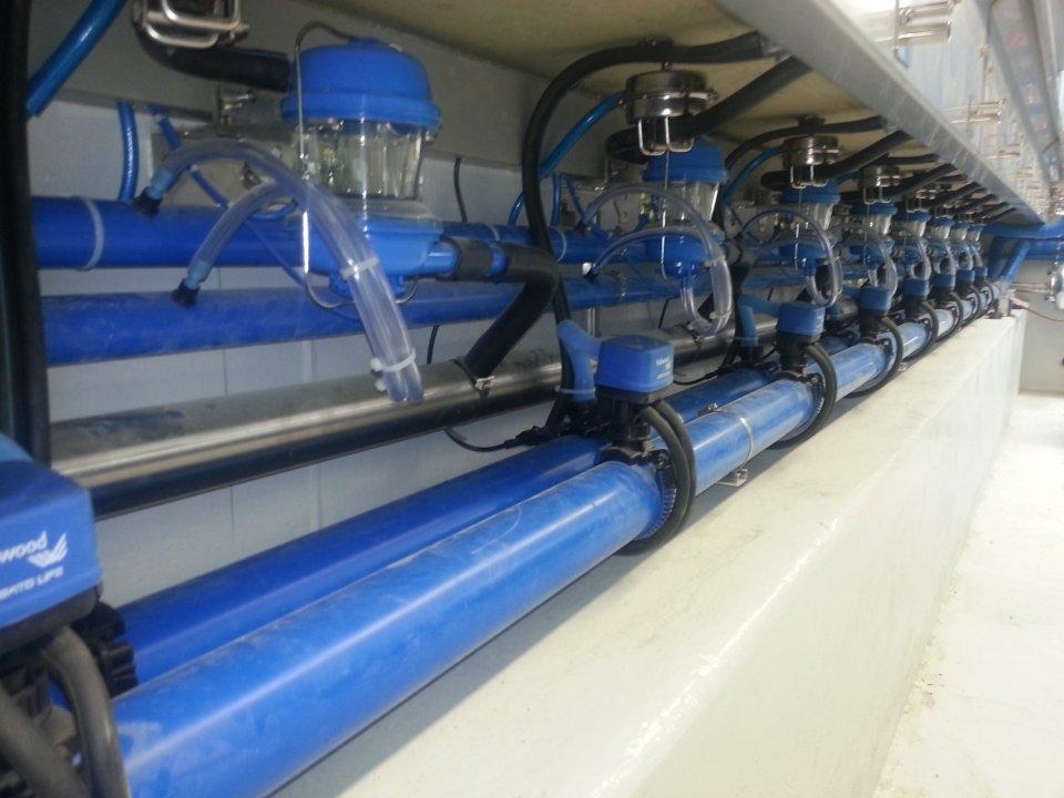 Salle de traite 2 ets foulquier traite elevage irrigation tarn aveyron