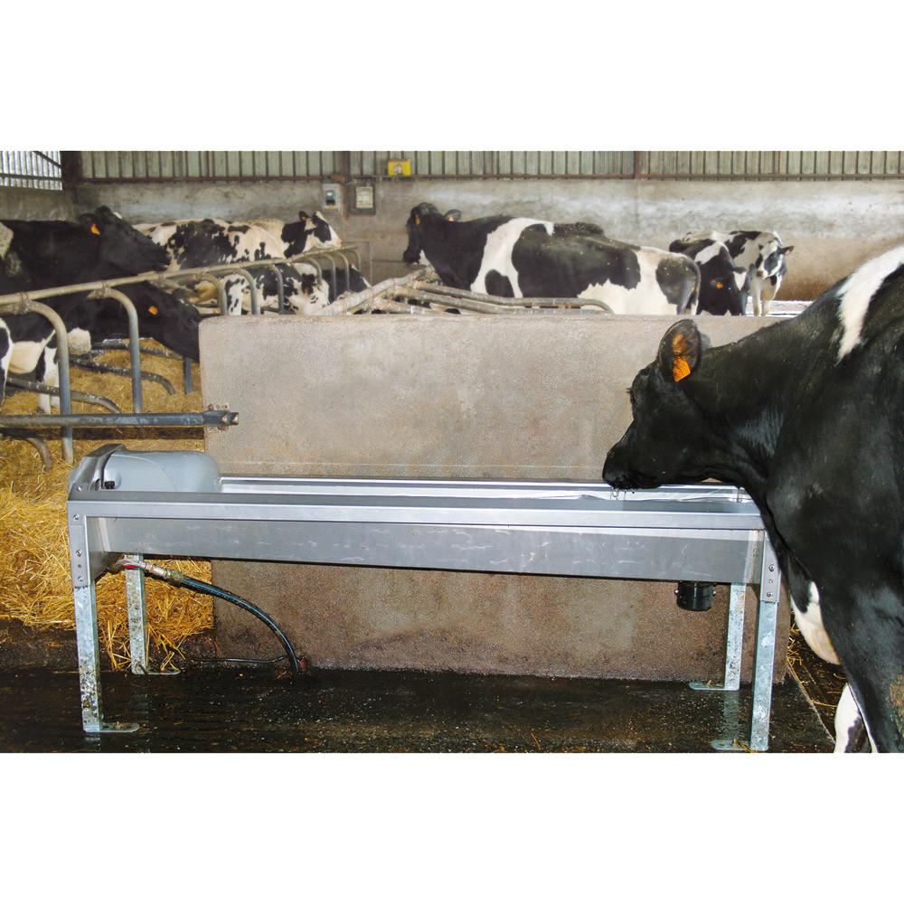 la buvette abreuvoir inox vache ETS FOULQUIER TARN AVEYRON Matériel d'élevage